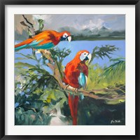 Framed Parrots at Bay II