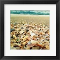 Framed Shells Beach II
