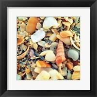 Framed Sea Glass II