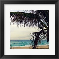 Framed Palm and Beach