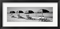 Framed Beach Reunion