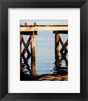 Framed Waterside Beauty I
