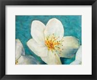 Purely Elegant I Framed Print