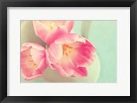 Framed Resplendent Blossoms II