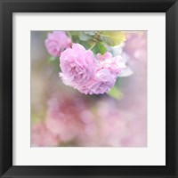 Framed Graceful Floral