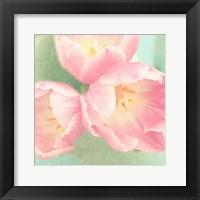 Framed Resplendent Blossoms I