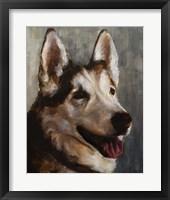 Best Friend I Framed Print
