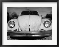 Framed Vintage Bug