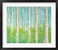 Framed Vibrant Birchwood