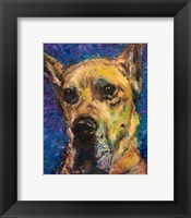 Happy Companion II Framed Print