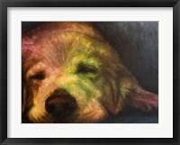 Framed Dog Day Afternoon