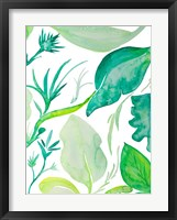 Green Water Leaves II Framed Print