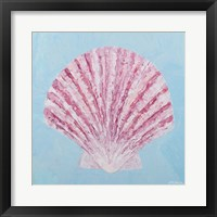 Conch & Scallop II Framed Print