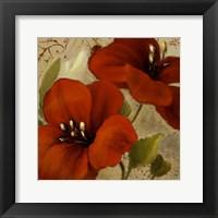 Bahama Flower II Framed Print