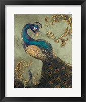 Framed Peacock on Sage II