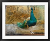 Feathered Dreams II Framed Print
