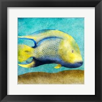Fish I Framed Print