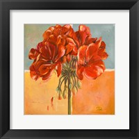 Red Geraniums I Framed Print