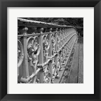 Walk Across I Framed Print