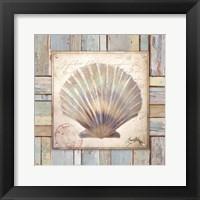 Framed Beach Shell I