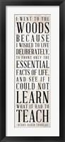 Framed Teach