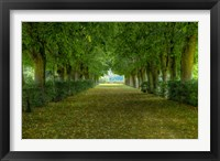 Framed French Gardens