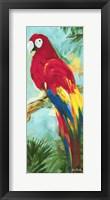 Tropic Parrots I Framed Print