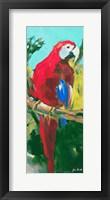 Framed Tropic Parrots II