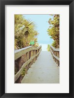 Framed Palm Walkway II