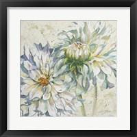White Dahlias I Framed Print