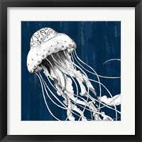 Framed Underwater Creatures I