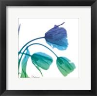 Framed Tulips L83 Turq Blue