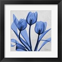 Framed Midnight tulips 2