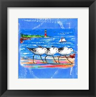 Framed Beach-Front-Shore Birds