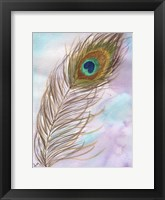 Framed Peacock Feather 1