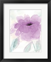 Lilac Peony I Framed Print