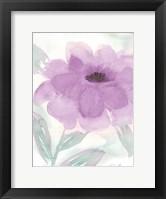 Lilac Peony II Framed Print
