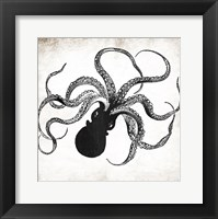 Framed Octopus Ink