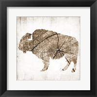Framed Buffalo Rings
