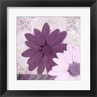 Framed Purple Bloom 2