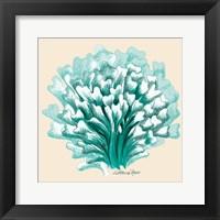 Framed Teal Beige Coral