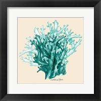 Framed Teal Beige Coral Mate