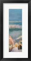 Framed Shells 1