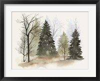 In the Mist II Framed Print