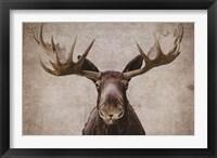 Framed Elmer