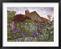 Framed Purple Iris