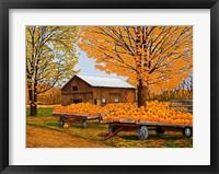 Framed Pumpkinville, Western Ny