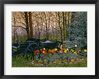 Framed Tulips And Wagon Wheels
