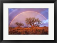 Framed Arizona Rainbow