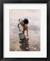 Framed Shell Collector